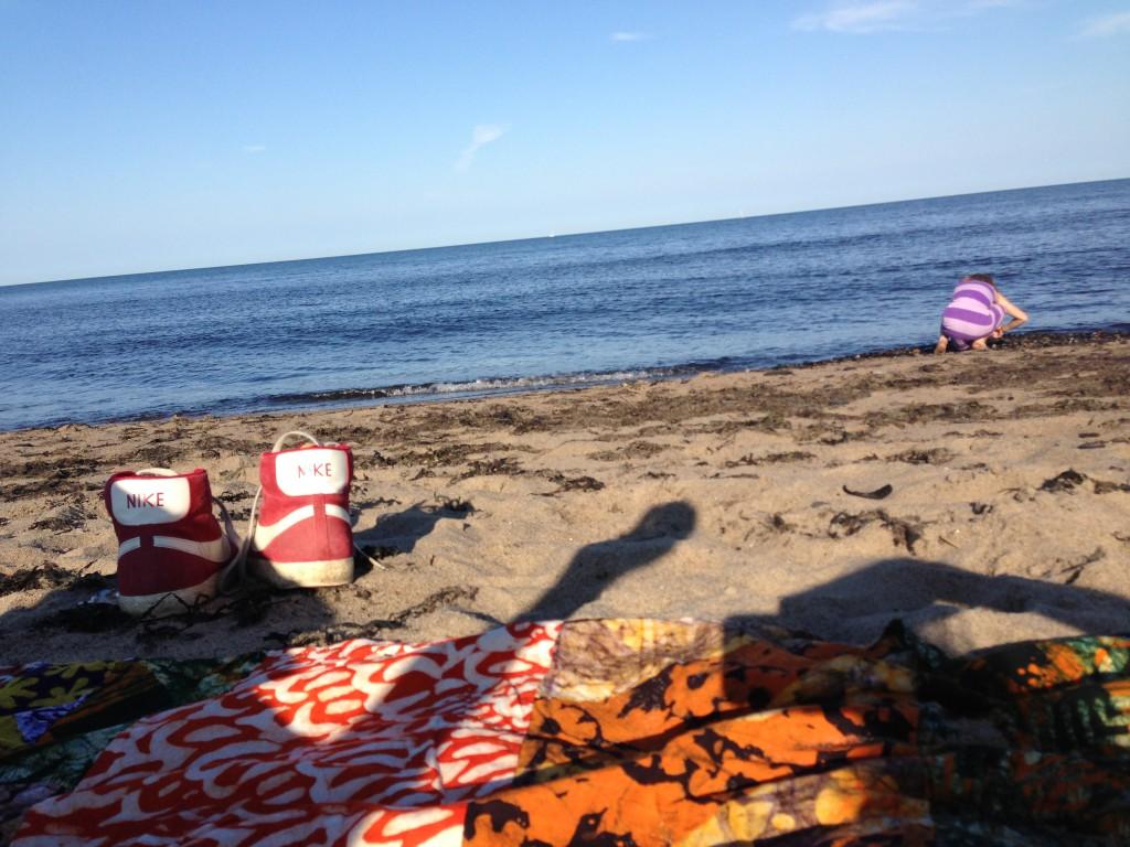 Vår närmaste strand vid Gislövs Hammar
